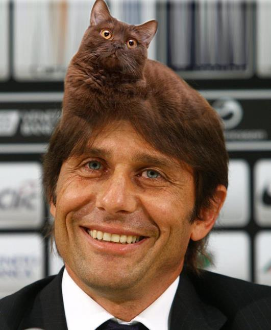 Antonio Conte ed il suo Gatto